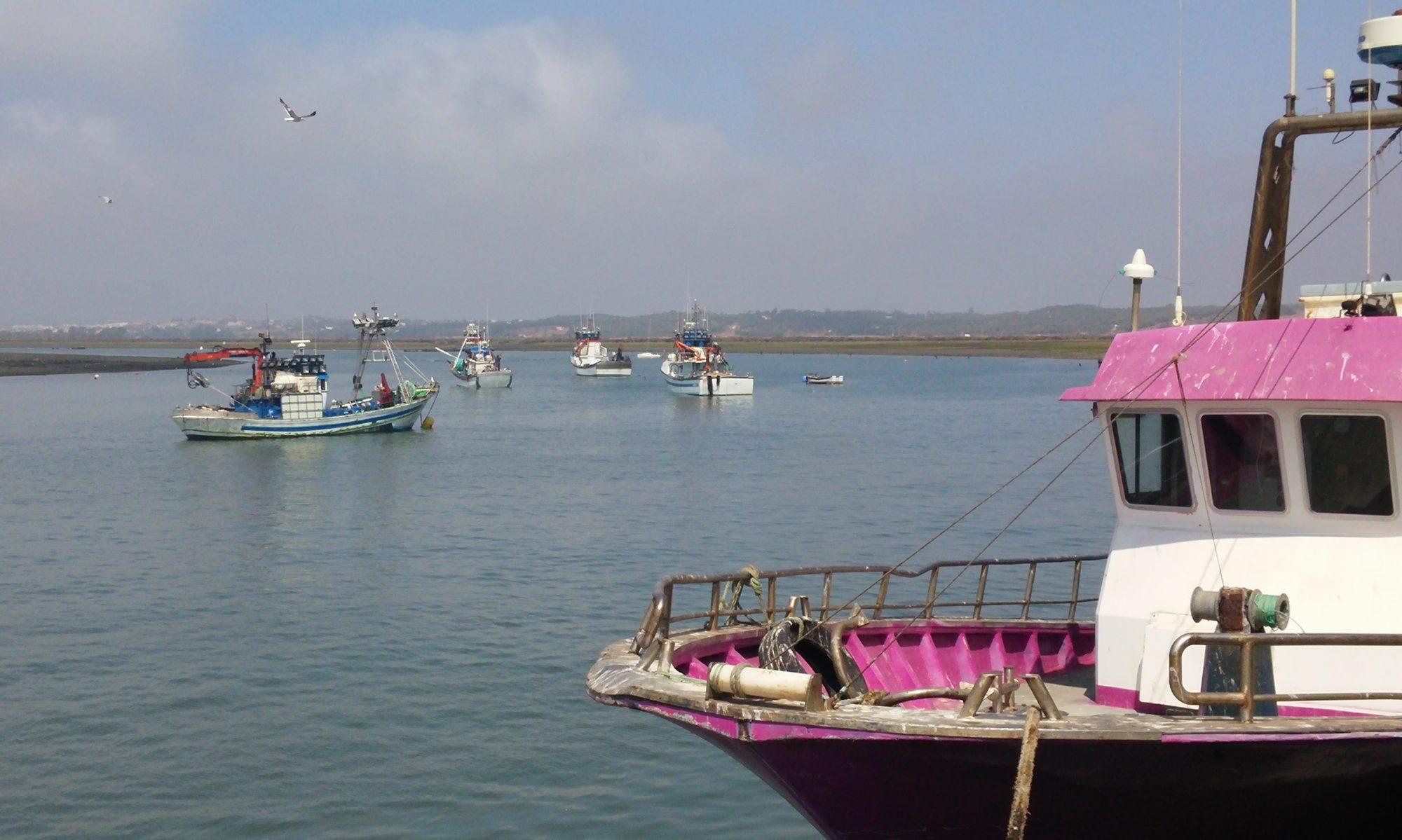 Jornadas sobre Políticas Marítimas y Pesqueras en el marco Europeo